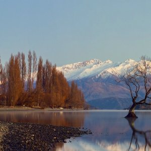 Arrowtown and Wanaka Tour